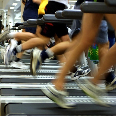 Multiple People Running on Treadmill